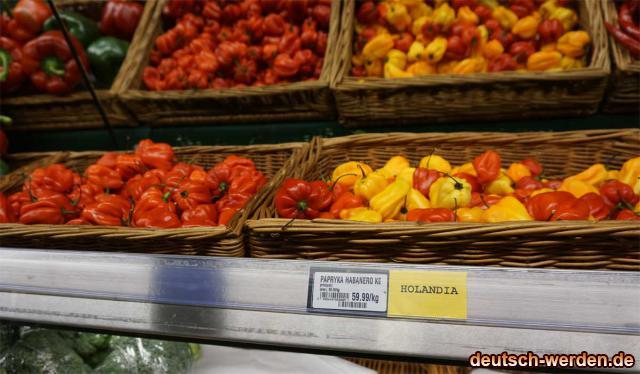 Habanero Holandia - Nicht extrem scharf!