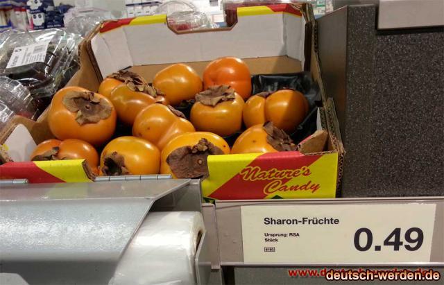sharon-fuerchte-ursprung-rs.jpg